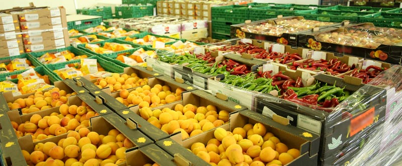 transport-fruits-et-legumes_denjean_31